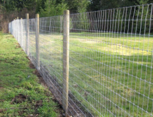Knotted Wire Mesh Livestock and Farm Fence pictures & photos
