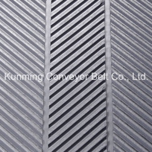Conveyor Belt PVC (AEM200/2: 0+2.8FB/4.8BR/AS) pictures & photos