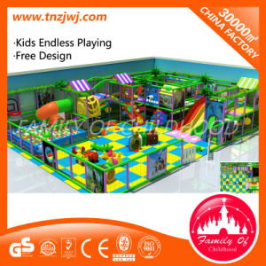 High-Quality Kids Indoor Castle Indoor Playground Indoor Playsets in Park pictures & photos