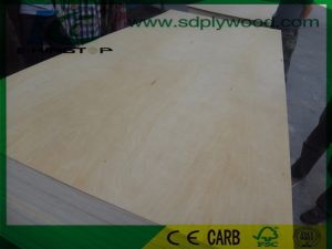 Birch Plywood D+/E Grade Thickness 5-18mm for USA Market pictures & photos