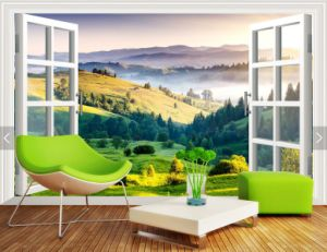 Blank Printable /Eco Solvent/ Wall Paper pictures & photos