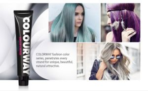 Colourway Wholesale Professional Formulated in Italy Salon Use Hair Dye pictures & photos