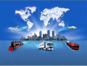 Ocean Freight From China Shenzhen Guangzhou Ningbo Shanghai