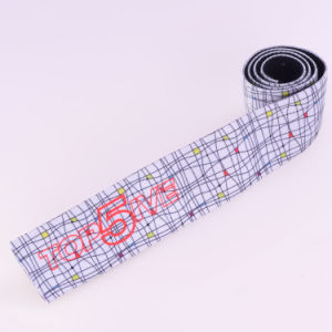 Elastic Red Polyester/Nylon/Cotton Strap Elastic with Ends pictures & photos