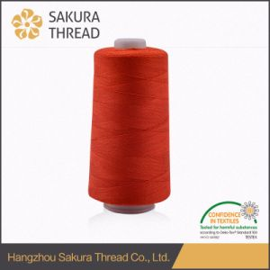 PP402 120d Flame Retardant Sewing Thread Oeko-Tex 1 Class pictures & photos