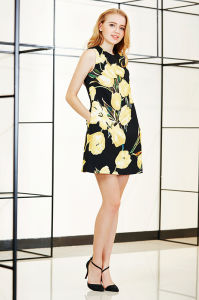 Flower Print Sleeveless A Line Mini Dress pictures & photos