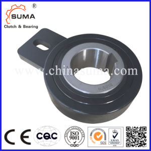 Cam Clutch Bearing Providing a High Torque Capacity (RSBW60) pictures & photos