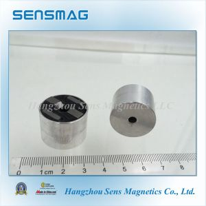 Customized Permanent AlNiCo Assembly Magnet for Holding pictures & photos