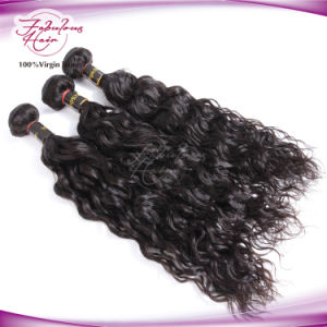 Human Hair Company Natural Wave Brazilian Virgin Remy Human Hair pictures & photos