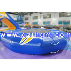 Inflatable Water Sport Food Pool Float/Floating Inflatable Amusement Park for Kids pictures & photos