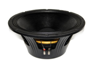 18inch 3000W PA Speaker with Double Spider pictures & photos