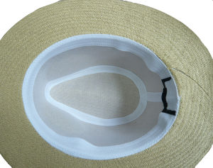 High Quality Print Straw Hats pictures & photos
