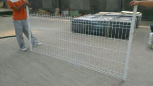 Powder Coated Galvanized Steel Wire Mesh Fence Exported to Australia Us pictures & photos