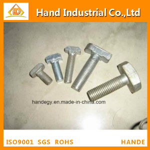 Stainless Steel Competitive Price A2 Metric Size T Head Bolt pictures & photos