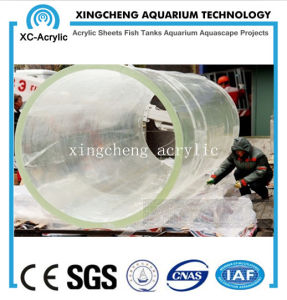 80mm Thick Acrylic Material Aquarium for Aquarium Project pictures & photos