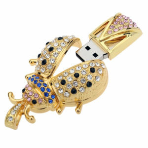 Bulk Insect 8GB USB Flash Drive with Jewelry Domestic Stone pictures & photos
