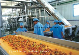 Professional Juice Production Turnkey Project pictures & photos