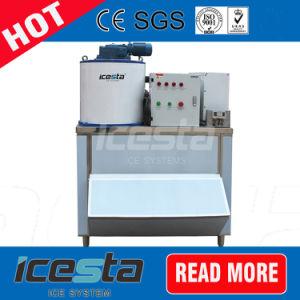 Icesta Beautiful 500kg Flake Ice Machine Plus Ice Storage Bin pictures & photos