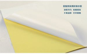 100 * 70cm Yellow or White Paper Posted Stickers pictures & photos