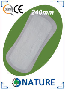 240mm Hot Sale Sexy Disposable Sanitary Napkin Without Wings pictures & photos