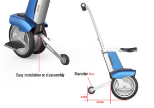Packhorse 14′′ Foldable Electric Sit or Stand Scooter pictures & photos