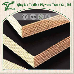 Concrete Wall Wood Panel Moulding Ply pictures & photos