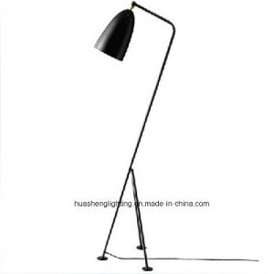 Modern Simple Floor Lamp/Classical Floor Light pictures & photos