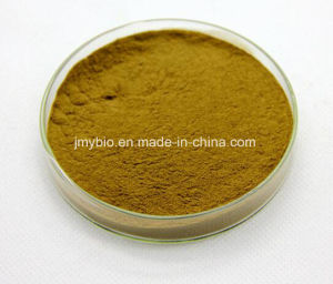 Weight Less Natural Lotus Leaf Extract Nuciferine 2% 10: 1 pictures & photos