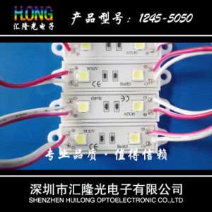 Waterproof LED Module with High Brightness for Ads pictures & photos