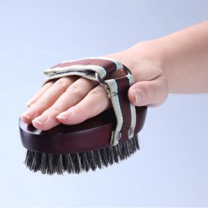 The New Pet Solid Wood Tun Hair Brush pictures & photos