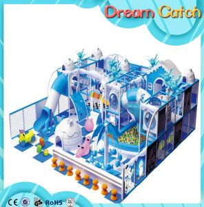 Hot Selling High Quality Playground/Kids Fun Playground Indoor pictures & photos