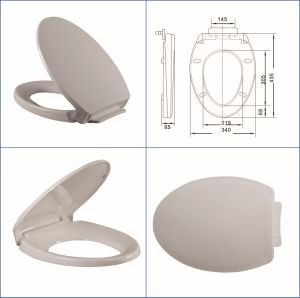 Toto Toilet Seat Heavy End 2.5kgs pictures & photos