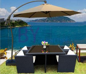 Modern Outdoor Garden Rattan Furniture pictures & photos