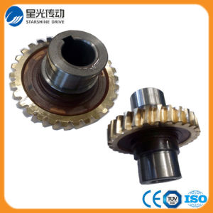 High Quality Gear Wheel for Nmrv Series pictures & photos