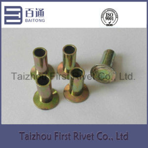 10-8 (6.25X12.7mm) Yellow Zinc Plated Flat Head Fully Tubular Steel Rivet pictures & photos