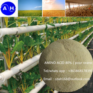 Enzymolysis 100% Water Soluble Amino Acid Powder 80% Pure Organic Fertilizer pictures & photos