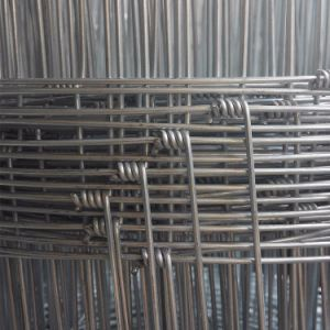 Premium Galvanized Hinge Joint Field Fence for Farm pictures & photos