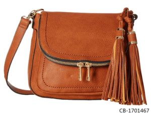 Fashion Women Bag High Quality (CB-1701467) pictures & photos
