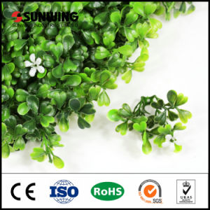 New Generation DIY Real Looking Fake Plants for Window Box pictures & photos