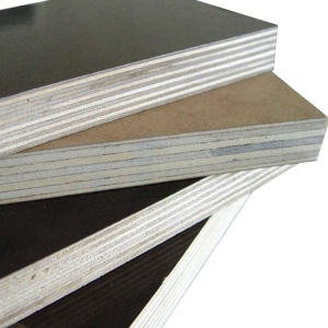 Film Faced Plywood with Price