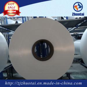 20d/48f China Nylon Semidull Filament Yarn pictures & photos