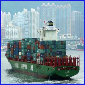 Lcl or FCL Contanier Logistics Forwarder From Guangzhou/Shenzhen to Santos Brazil pictures & photos