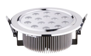 LED Ceiling Light (BW-A61037)