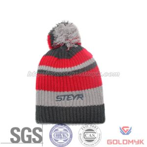 Knitted Hat with Top Ball (GKA0401-A00026) pictures & photos