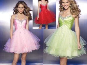 2011 Newest Party Dress Ceremony Dress (9274)