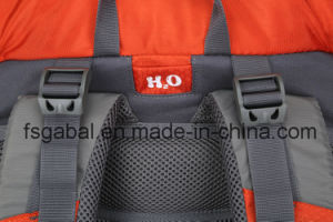Unisex Softback Type Outdoor Camping & Hiking Travel Backpack Bags pictures & photos