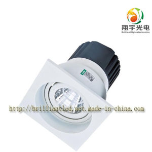 10W LED Ceiling Lighting with CE and RoHS Certification