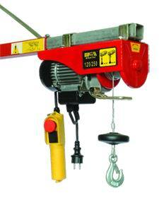 WT-125/250 Electric Hoist pictures & photos