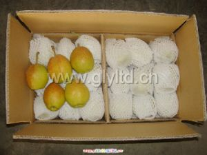Chinese Fresh Fragrant Pear for Sale pictures & photos
