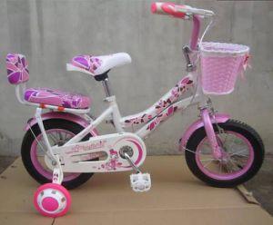 High Quality Children Bike Kid Bike Child Bicycle (AFT-CB-112)